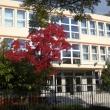 Kőbányai Fekete István Általános Iskola