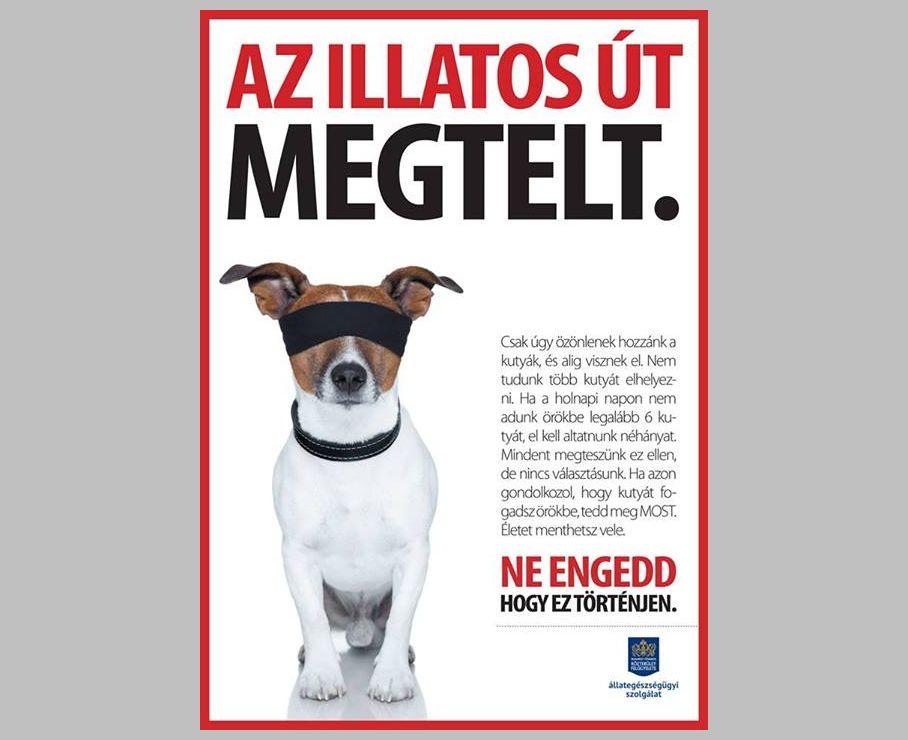 Az Ebrendészet felhívásának plakátja (forrás: Facebook)
